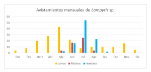 grafico lampyris