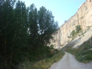 28052012_GL_Raphaël De Cock_Alcalá del Júcar_Albacete_Habitat Lamprohiza paulinoi_2
