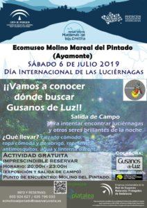 Cartel Día Internacional Luciérnagas 2019_Ayamonte_Huelva